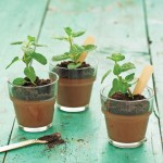 Pudim de (chocolate) Planta