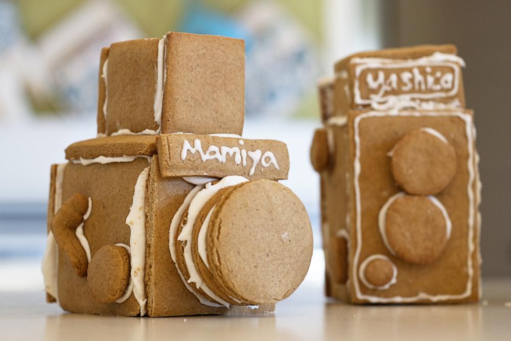 Gingerbread Cameras