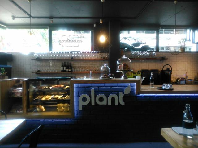 plant1_gordelicias